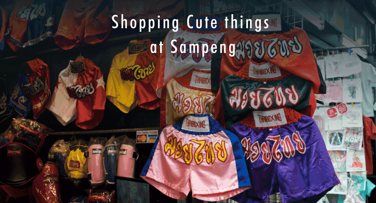 <span class='p-name'>Shopping Cute things at Sampeng</span>